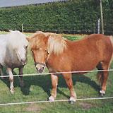 Zorgboerderij 'De Piekhoorn', Achtmaal