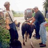 Zorgboerderij 'De Naoberhoeve', Echten