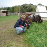 Zorgboerderij MMM, Zeewolde