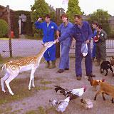 Stichting' Zorgboerderij Chaamdijk' ., Chaam