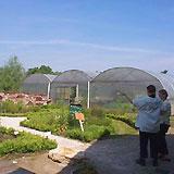 Biologische zorgtuinderij 'De Bundertjes', Helmond